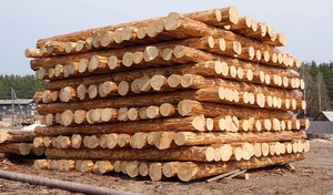 Советы специалистов, как предотвратить появление трещин в древесине сруба