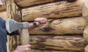 Способ заделки трещин и щелей в древесине срубов с помощью мха