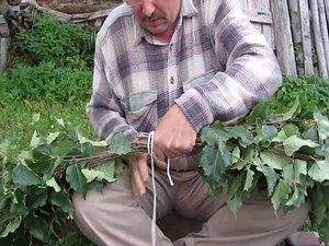 Когда необходимо резать веники из березы для бани?