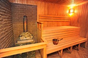 Как выбрать печку на дровах для бани и сауны?