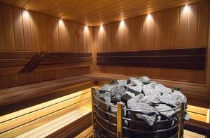 Какие камни выбрать для каменки в баню?
